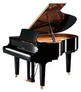Piano de Cauda Yamaha C2X