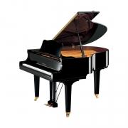 Piano de Cauda GC1 Yamaha