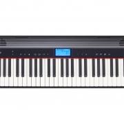 Teclado Roland Go Piano 61